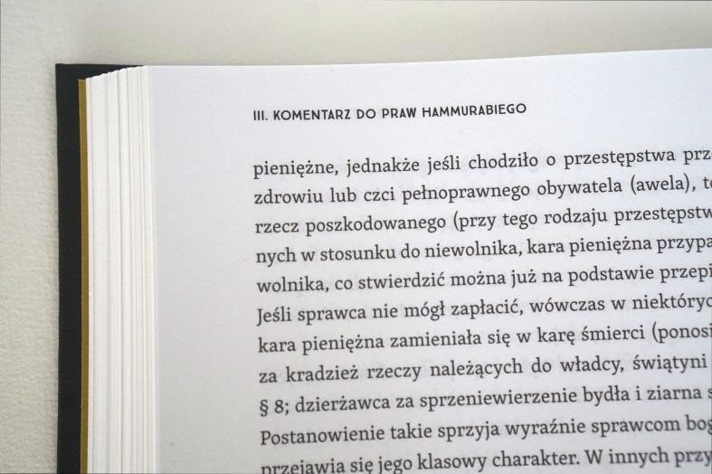 Prawa Hammurabiego_10